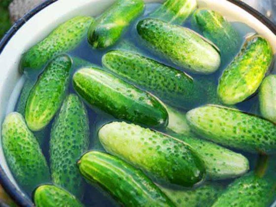 Секреты удачных домашних заготовок. Хрустящие огурчики и вкусные помидорчики